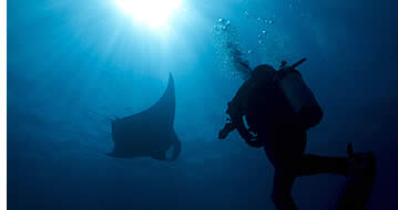 Scuba Diving Rates in Bocas del Toro, Panama